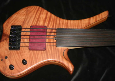 0183 Salace Chambered Fretless 6